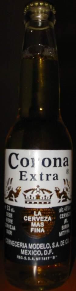 corona beer essay